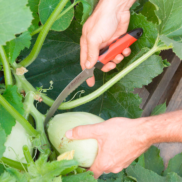 Harvesting Knife