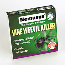 Image of Nemasys Vine Weevil Killer