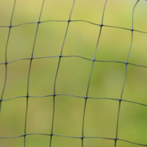 Butterfly Protection Netting