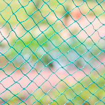 Bird Protection Net - 4m x 20m