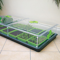 Vitopod Propagator - Double Length