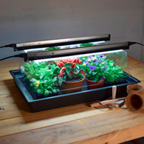 Geopod Heated Propagators