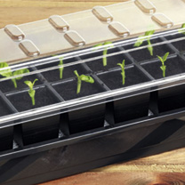 Self-watering Seed Success Kits (12 Cell)