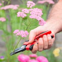 Cut-n-Hold Flower Snips