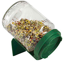 Glass Germinator Jar