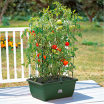 Tomato Growing Garden Success Kit, Trolley, Extension Kit