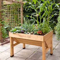 VegTrug 1 meter - Natural plus FREE seeds worth 15