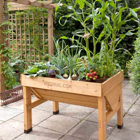 VegTrug x 1m plus FREE seeds worth £15