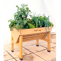 VegTrug x 1m and FREE Seeds