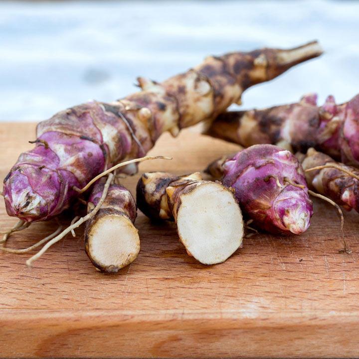 Jerusalem Artichoke Gourmet Roots - Papas