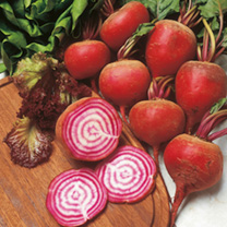 Image of Beetroot Seeds - Chioggia Pink