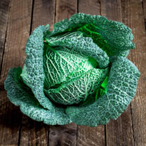 Cabbage (Savoy) Seeds - Cordesa F1