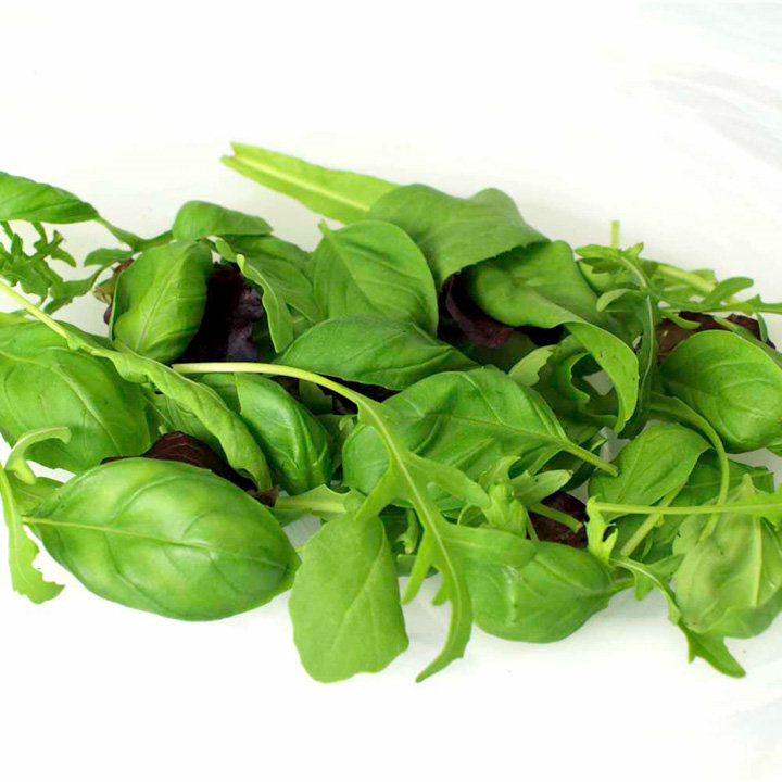 Leaf Salad Seeds - Italian