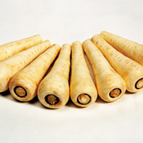 Image of Parsnip Seeds - Countess F1