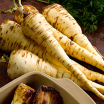 Root Vegetable Seed - Collection