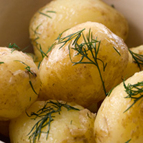 Image of Seed Potatoes - Accord 1kg