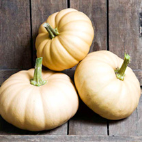 If you know your squashes, this is best described as a Crown Prince x Butternut cross, or a kind of flattened round Butternut type. Whats more importa