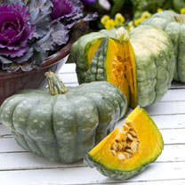 Squash Seeds - Queensland Blue