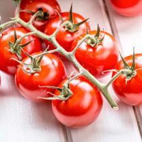 Tomato Plant - F1 Crimson Cherry