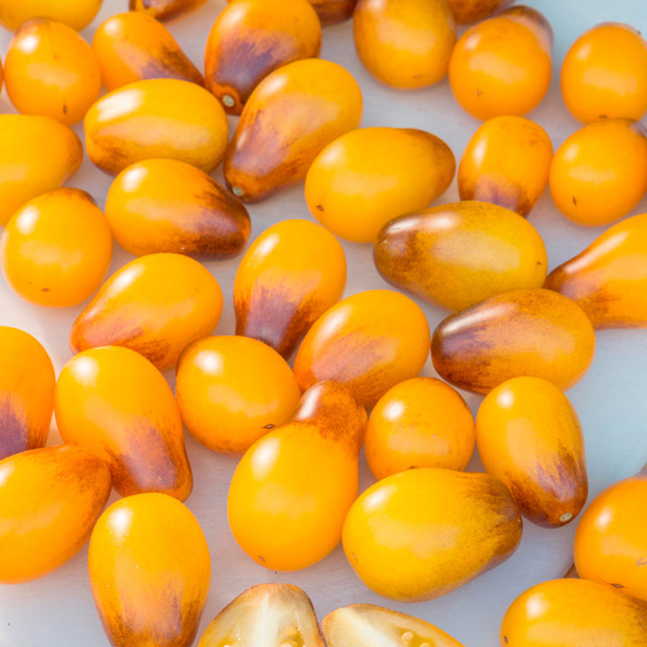 Tomato Artisan™ Seeds - Indigo Pear Drops