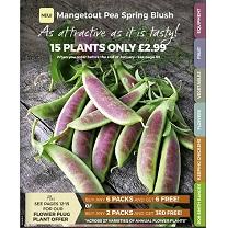 Dobies Gardening Catalogue 2018